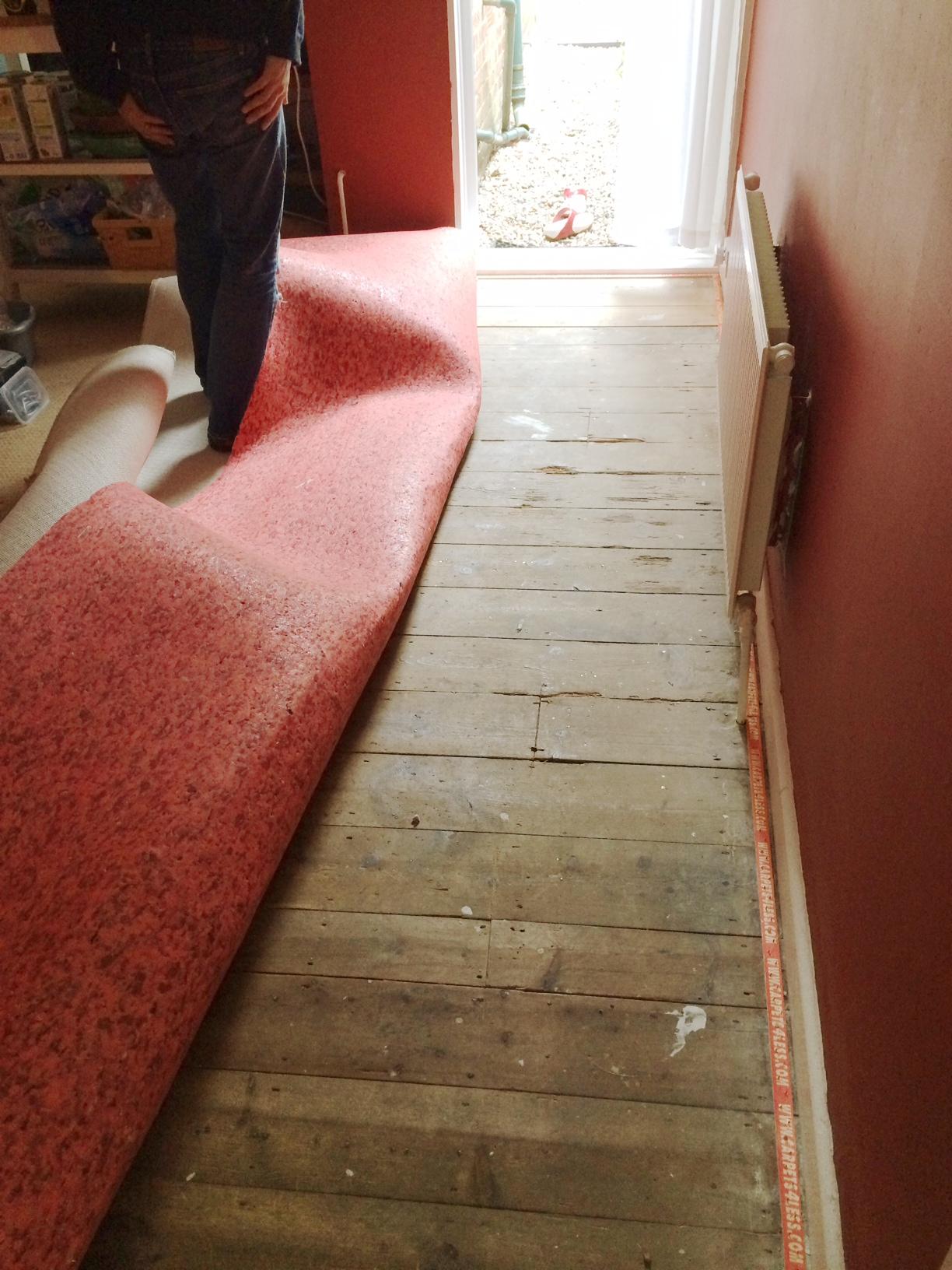 Floor Removing Carpet