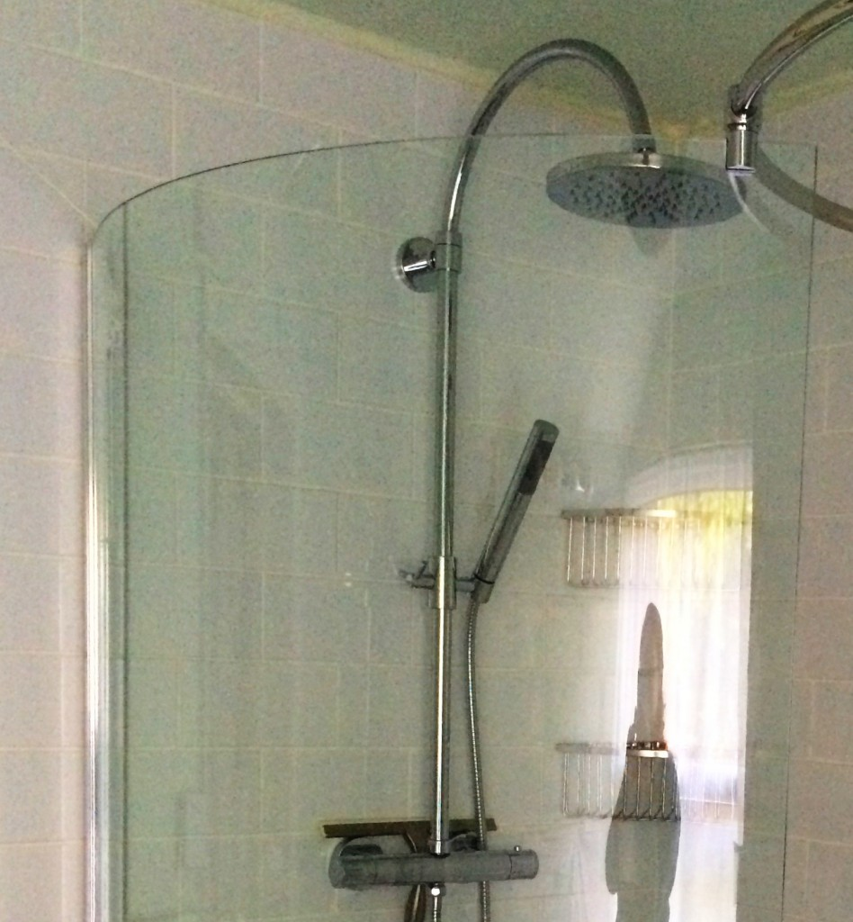 overhead and movable shower heads