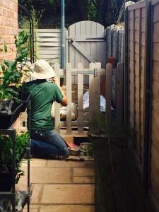 """booyaa painting """"Betsy's fence"""""""